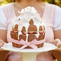 Giant Cupcake Cake Pan