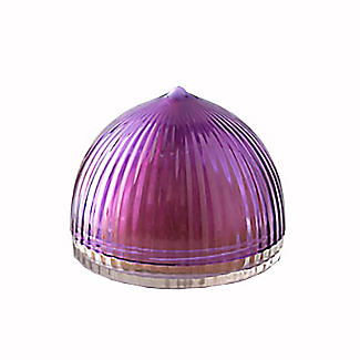 Onion Fridge Food Saver