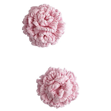 3 Carnation Cutters