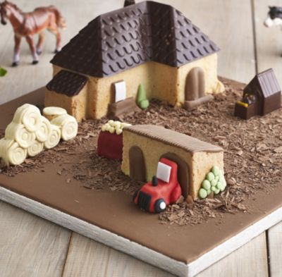 Lakeland Cake Decorating Moulds : Silicone Farmhouse Mould in childrens birthday cakes at ...