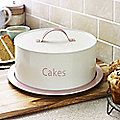 Store and Serve Cake Tin