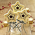 Star Festive Lolly Mould