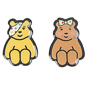 Pudsey Fridge Magnets