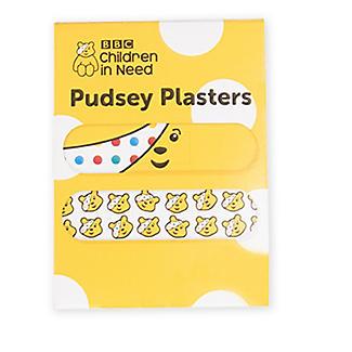 Pudsey Plasters
