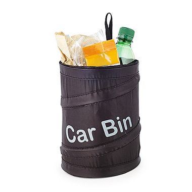 The Collapsible Car Bin