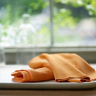 E-cloth Window Cleaning and Polishing Cloths x 2 alt image 3