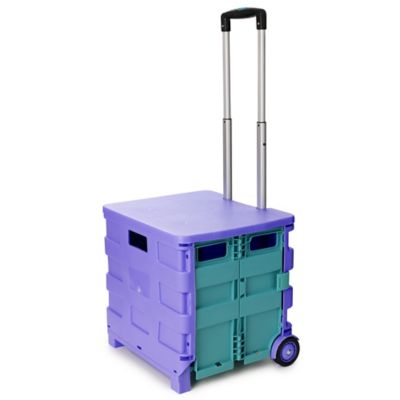 Foldable Funky Trundle Storage On Wheels