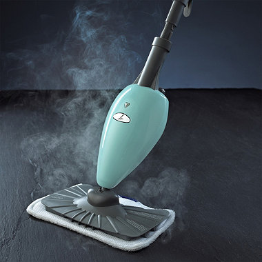 A steam mop