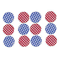 6 Red & 6 Blue Gingham Twist Off