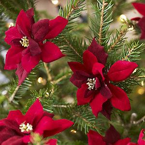 6 Poinsettia Clips