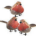 6 Feathered Robins