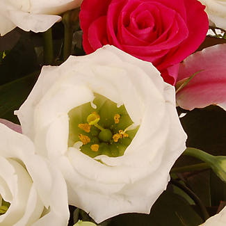 Lily and Rose Bouquet with free express delivery alt image 2