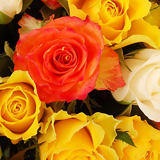 Fairtrade Mixed Roses with Free Express Delivery alt image 2