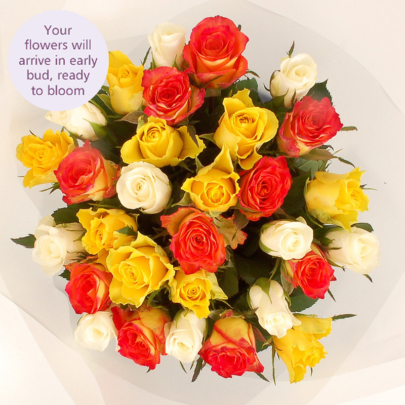Fairtrade Mixed Roses with Free Express Delivery
