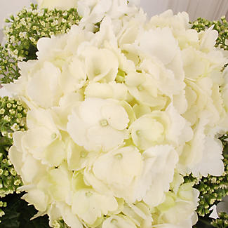 Pearl White Bouquet with Free Express Delivery alt image 2