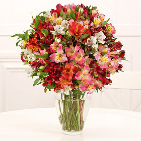 The Alstroemeria Bouquet