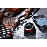 iGrill BBQ Thermometer