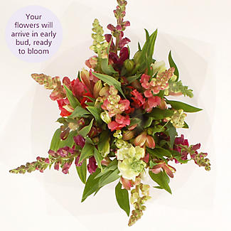 Country Cottage Bouquet Gift Set With Free Express Delivery alt image 3