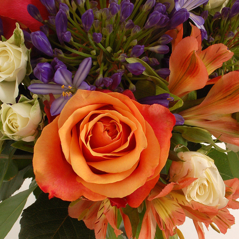 Summer's Day Bouquet With Free Express Delivery