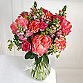 Coral Peonies Bouquet With Free Express Delivery