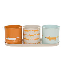 Scion Mr Fox Herb and Plant Pots