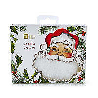 Santa Snow Table Scatter