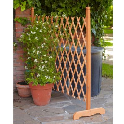 Freestanding Expandable Wooden Trellis In Uncategorised At