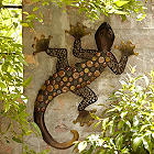 Geko Wall Decoration