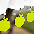 4 Apple Tablecloth Weights