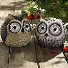 Mr & Mrs Owl Solar Lights