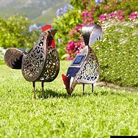 2 Solar Hens