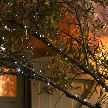 50 Everbright Solar Fairy Lights