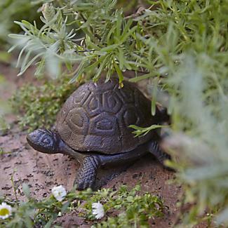 Tortoise Key Hider alt image 2