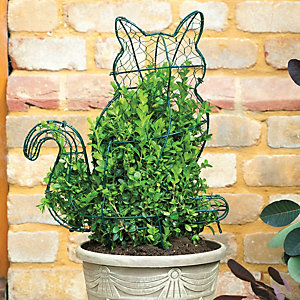 Thompson and Morgan Topiary Cat Kit