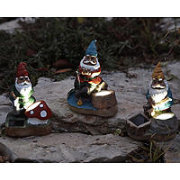 Gnome Spotlight Set