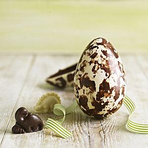Chococo Dorset Dinosaur Egg