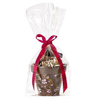 Chococo Flowerpot with Chocolate Shards