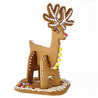 Gingerbread Reindeer Kit