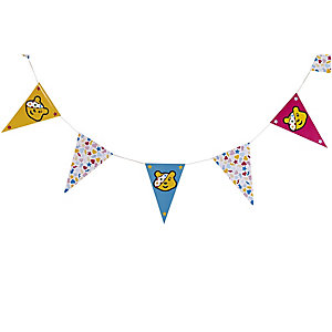 Pudsey Bunting