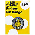 Pudsey Pin Badge