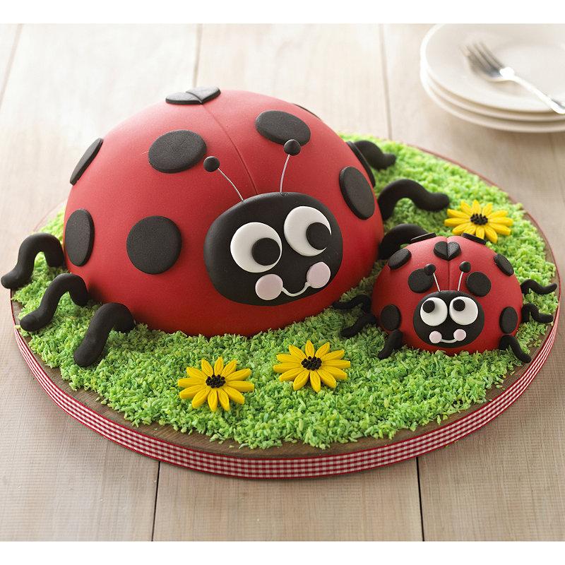 Lakeland Ladybird Cake Recipe