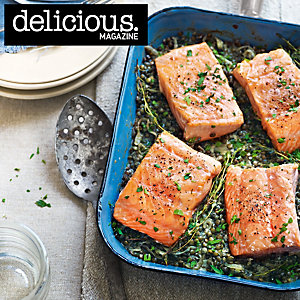 Salmon and horseradish cream lentils