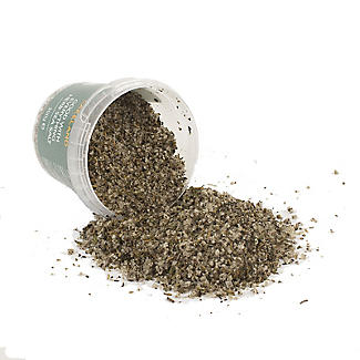 Lakeland Good With Everything Herb Sea Salt 300g alt image 2