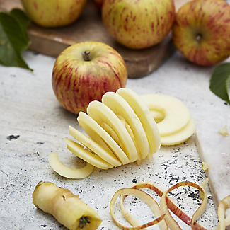 Apple Master Peeler and Corer alt image 3