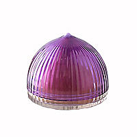 Onion Fridge Food Saver
