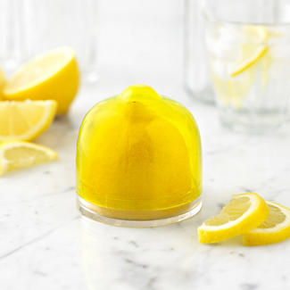 Lemon Fridge Food Saver alt image 2