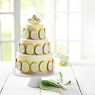 Lakeland Cake Airbrush Kit alt image 2