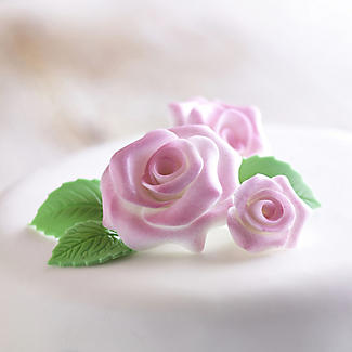 Renshaw Flower and Modelling Icing Paste - 250g White alt image 2