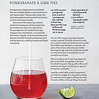 Kombucha – Healthy Recipes For Naturally Fermented Tea Drinks By Louise Avery alt image 5