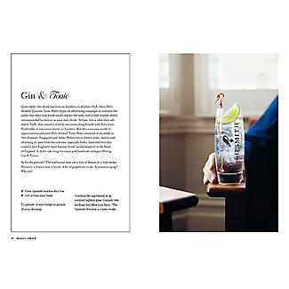 SIP: 100 Gin Cocktails with only 3 Ingredients alt image 4